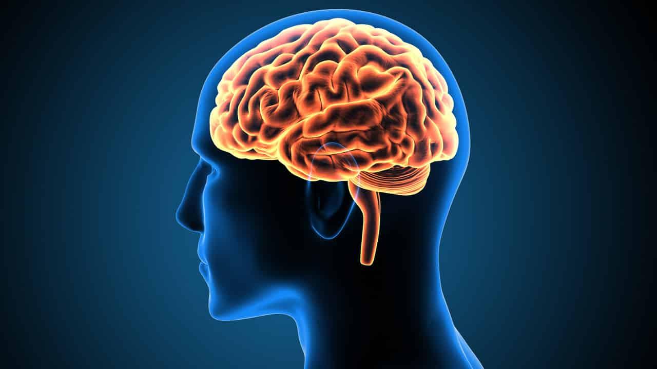 Eine Grafik eines leuchtenden menschlichen Gehirns in einem blauen Kopf
