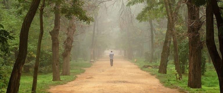 Spätstadium Demenz - Ein Mann geht auf einem alten Weg durch einen Wald