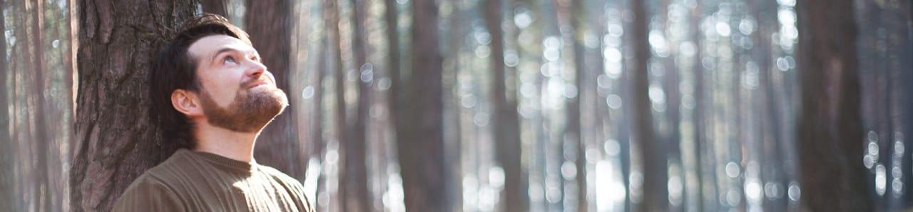 Ein Mann sitzt im Wald und schaut in den Himmel